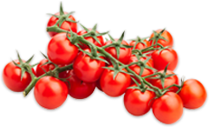 footer_tomato